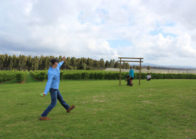 Growers playing cricket in orchard
