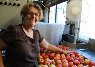 Gwenda sorting Gala apples