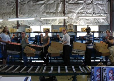 Team on packing line