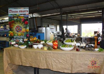 McGregor Terrace Food Project catering lamb spit roast & gourmet salads