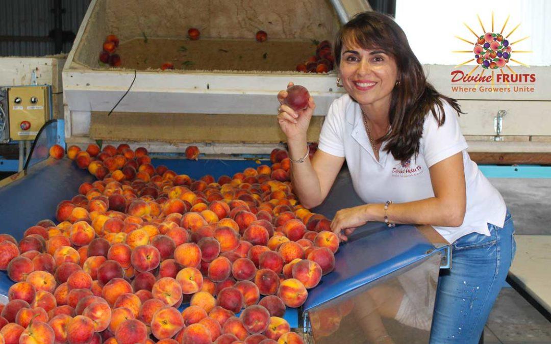 Mira with Crimson Lady yellow peaches