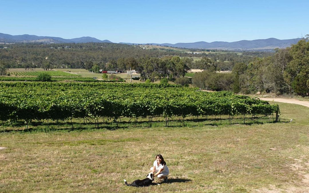 Stupendous Stanthorpe – The Perfect Country Escape