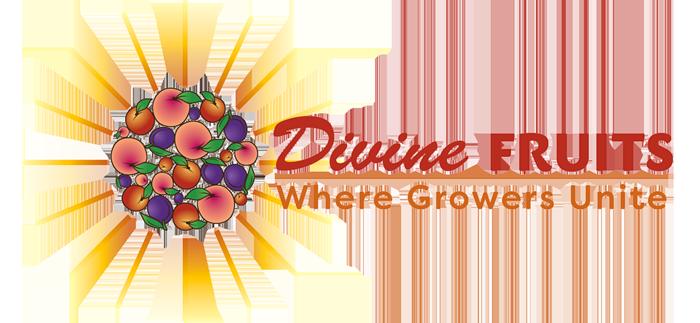 Divine Fruits